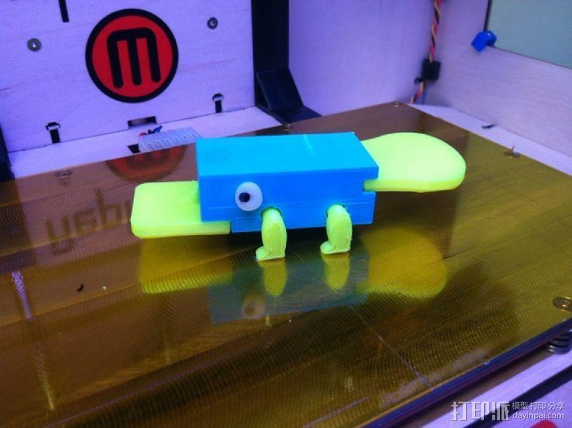 鸭嘴兽模型 3D打印模型渲染图