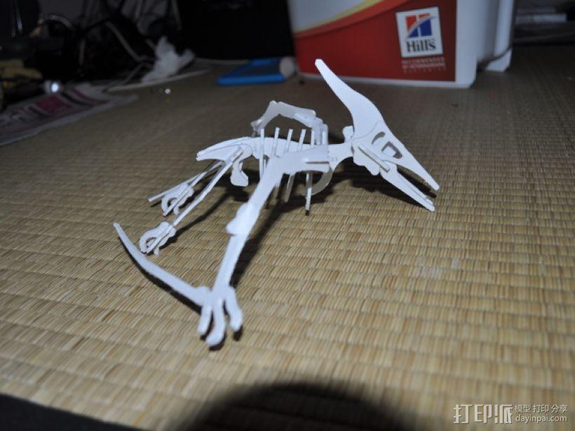 恐龙骨架模型 3D打印模型渲染图