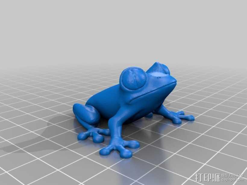 非洲树蛙 3D打印模型渲染图