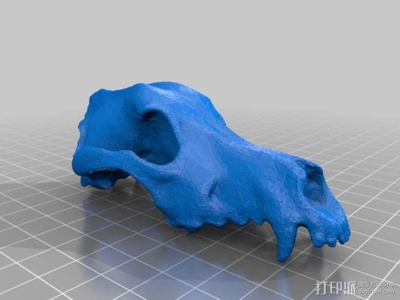 低面数狗头骨 3D打印模型渲染图