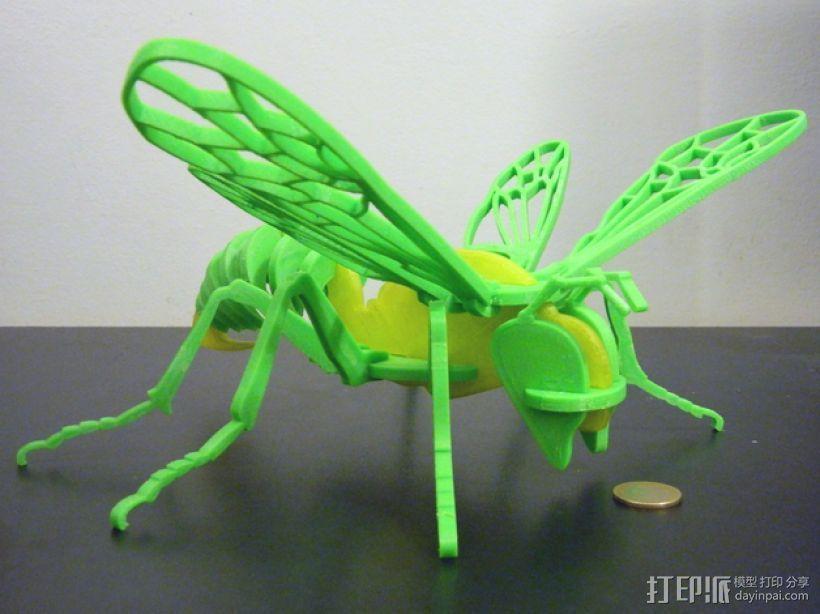 蜜蜂模型 3D打印模型渲染图