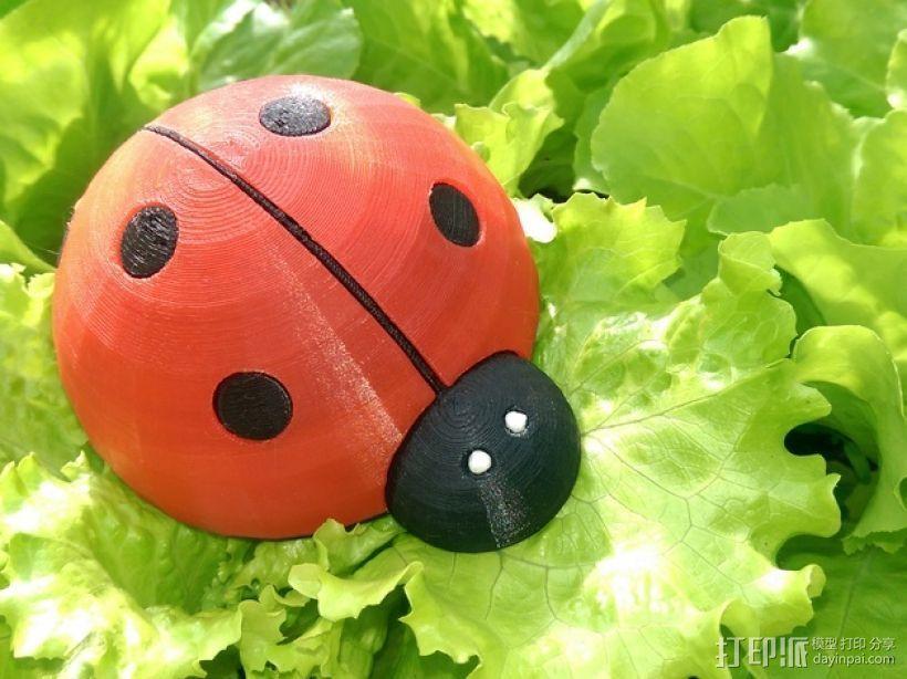 瓢虫  3D打印模型渲染图