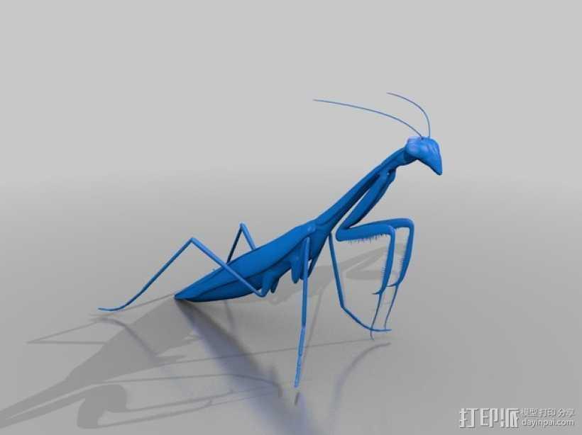 螳螂 3D打印模型渲染图