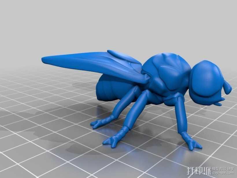 苍蝇 3D打印模型渲染图