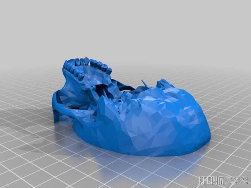 人头头骨 3D打印模型渲染图