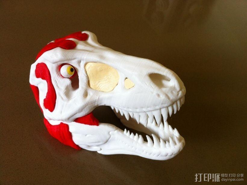 霸王龙头部肌肉组织 3D打印模型渲染图