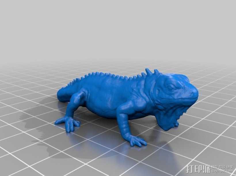 鬣蜥蜴 3D打印模型渲染图