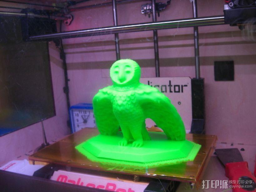 仓鸮 谷仓猫头鹰 3D打印模型渲染图