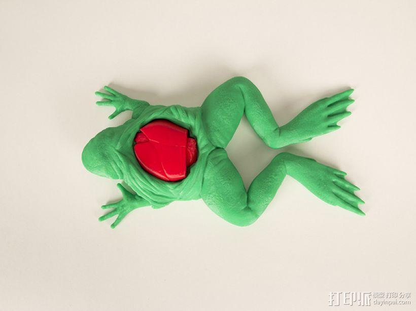 解剖的青蛙 3D打印模型渲染图