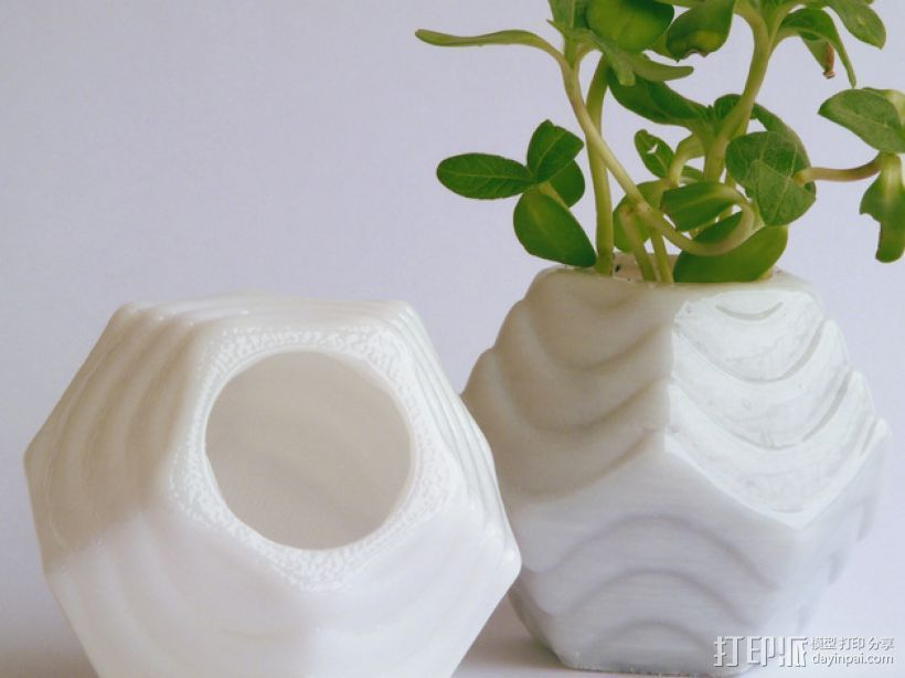 Plantekka十二面体花盆 3D打印模型渲染图