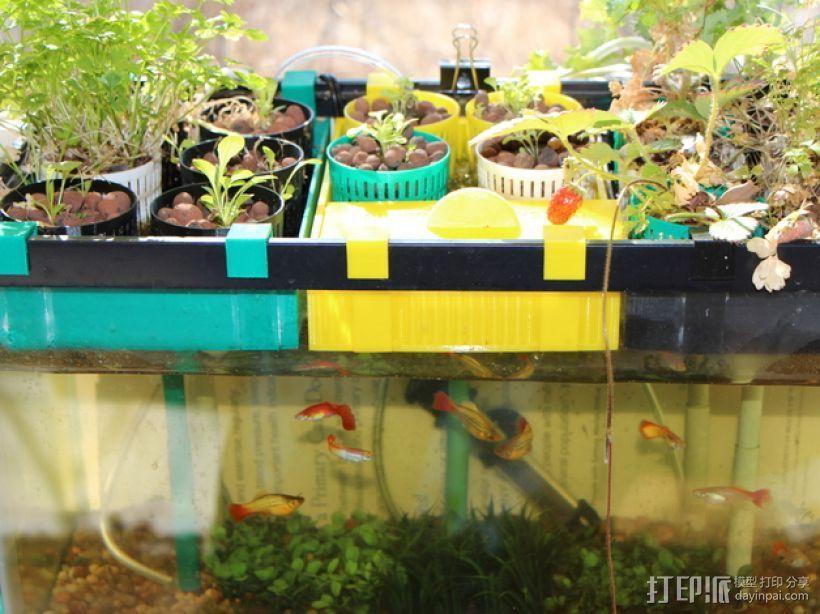鱼菜共生系统 3D打印模型渲染图