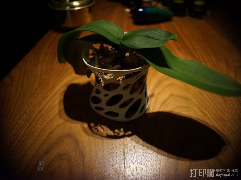 镂空兰花花瓶 3D打印模型渲染图