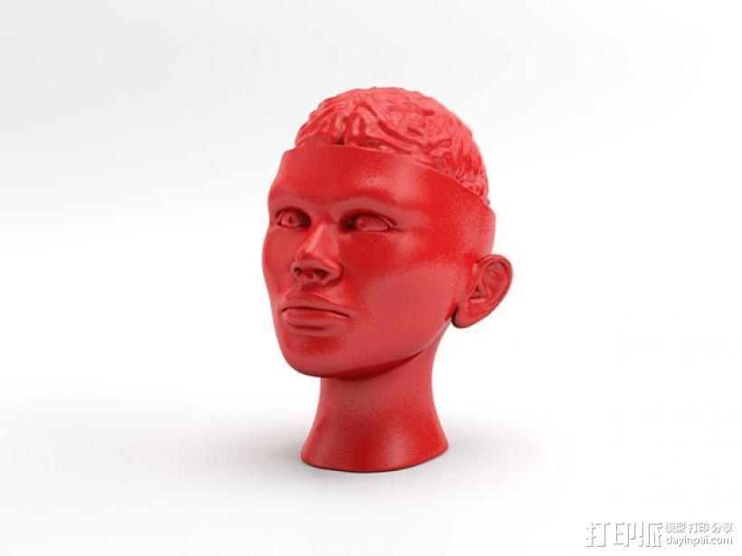 人脑形纸镇/压纸器 3D打印模型渲染图