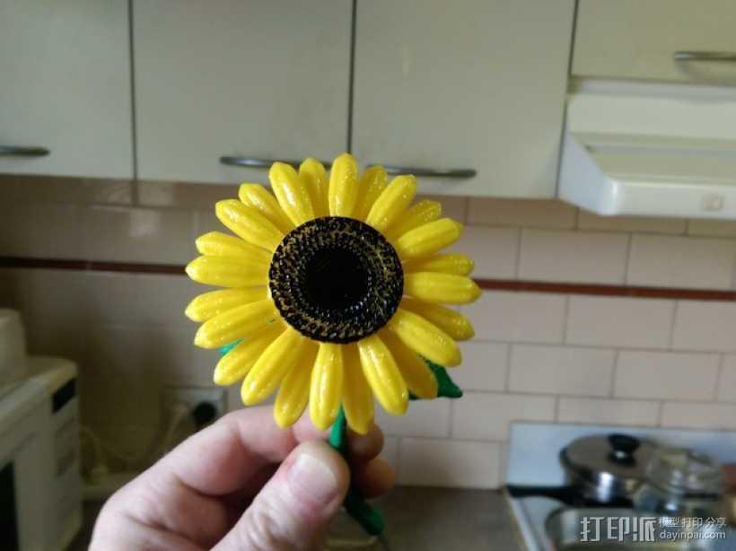 迷你向日葵 3D打印模型渲染图