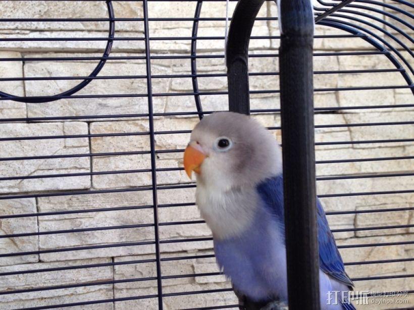 鸟笼:小鸟站架 3D打印模型渲染图
