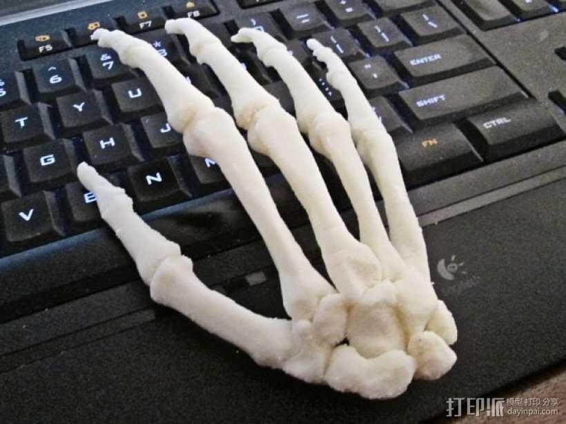 右手手骨 3D打印模型渲染图