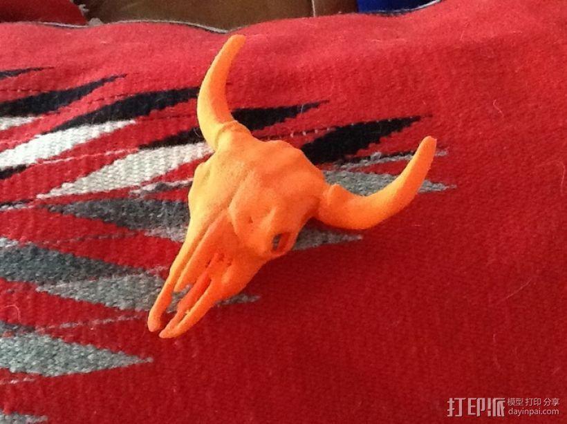 美洲野牛头骨模型 3D打印模型渲染图
