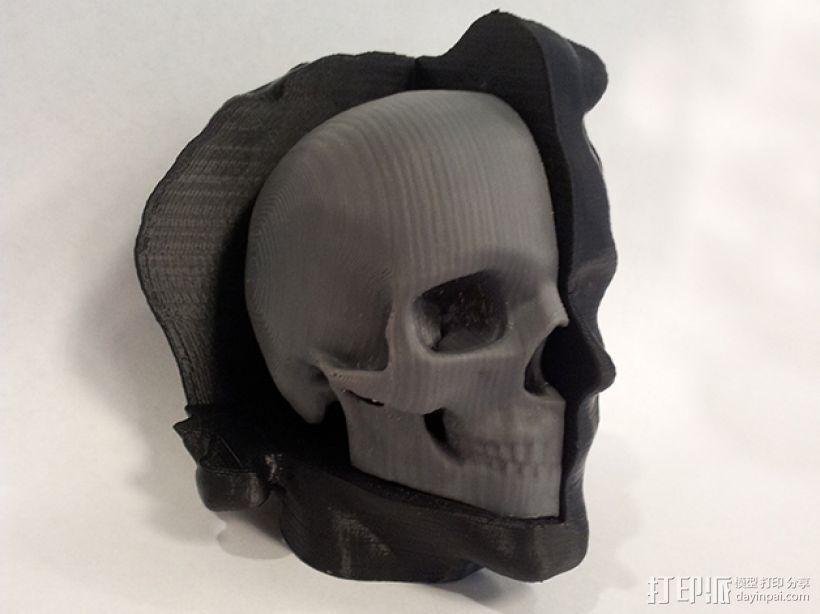 头部模型和头骨 3D打印模型渲染图
