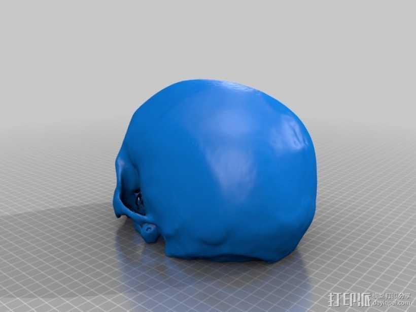 人头骨模型 3D打印模型渲染图