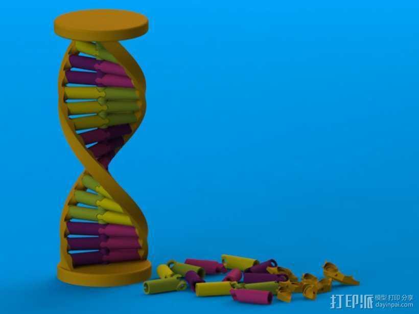 DNA积木 3D打印模型渲染图