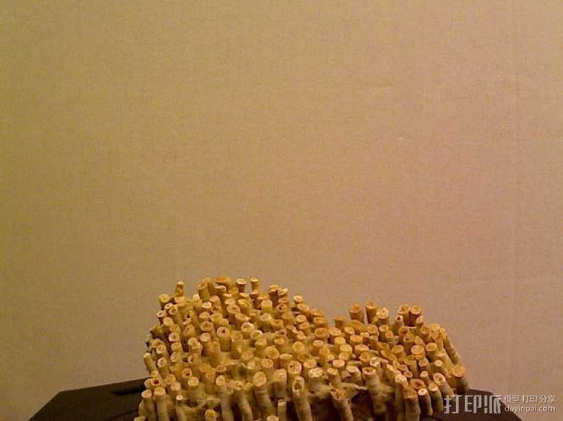 床板珊瑚 化石模型 3D打印模型渲染图
