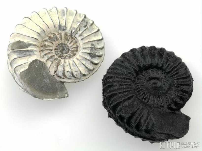 鹦鹉螺化石模型 3D打印模型渲染图