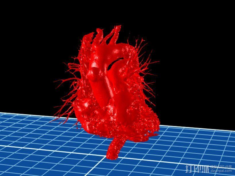 心脏模型 3D打印模型渲染图