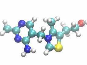 硫胺素分子模型