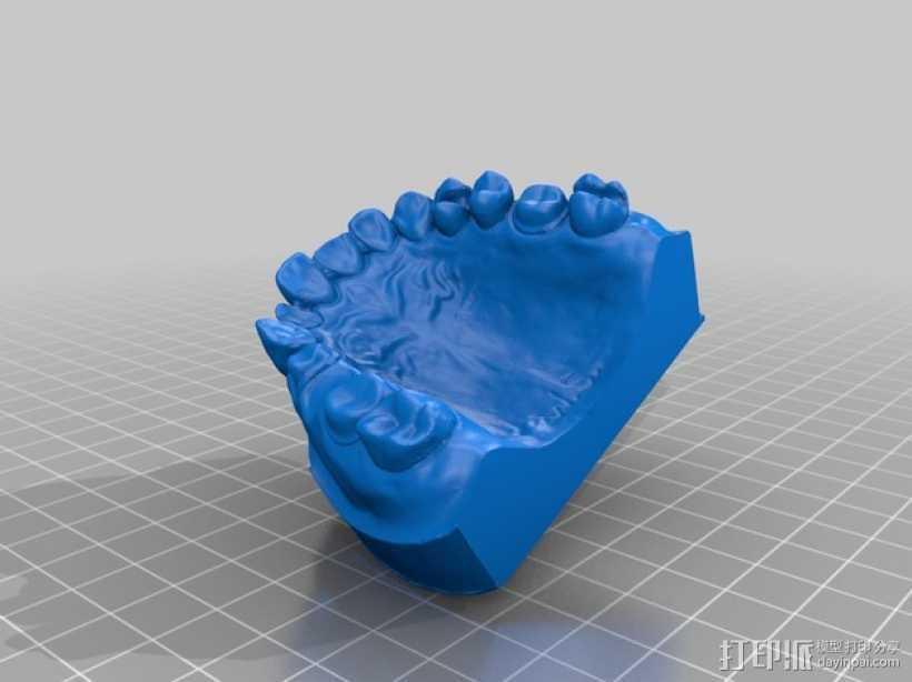 牙颌模型 3D打印模型渲染图
