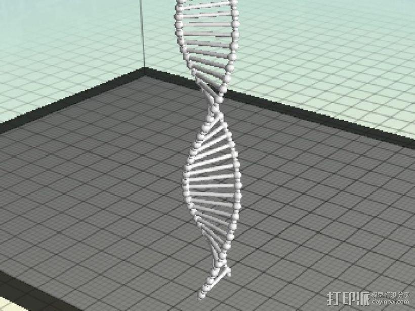 DNA双螺旋结构 3D打印模型渲染图