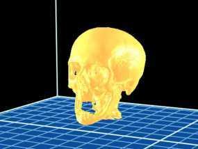 分形头骨模型