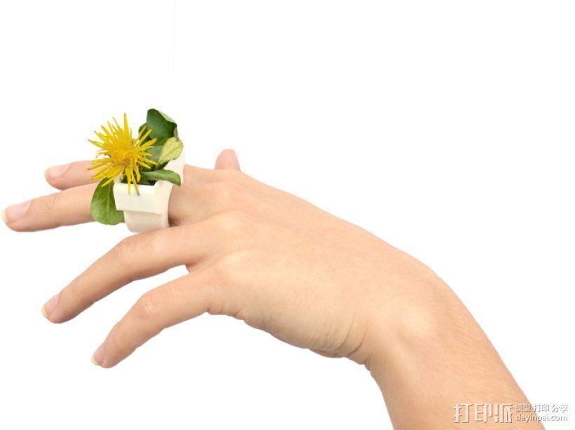 花盆戒指 3D打印模型渲染图