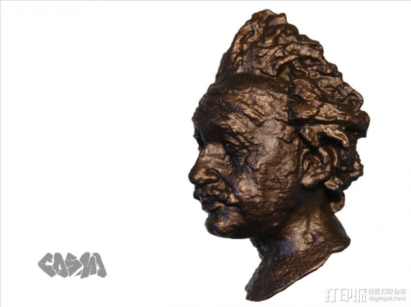 爱因斯坦头像 3D打印模型渲染图