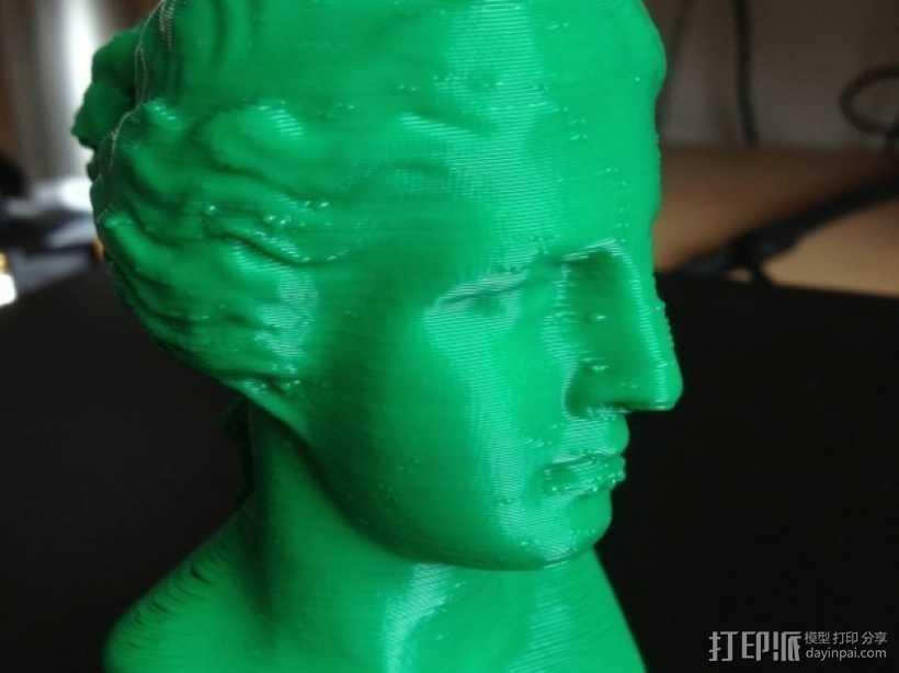 维纳斯头像 3D打印模型渲染图