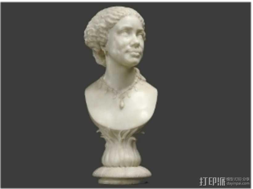 玛丽·希科尔头像 3D打印模型渲染图