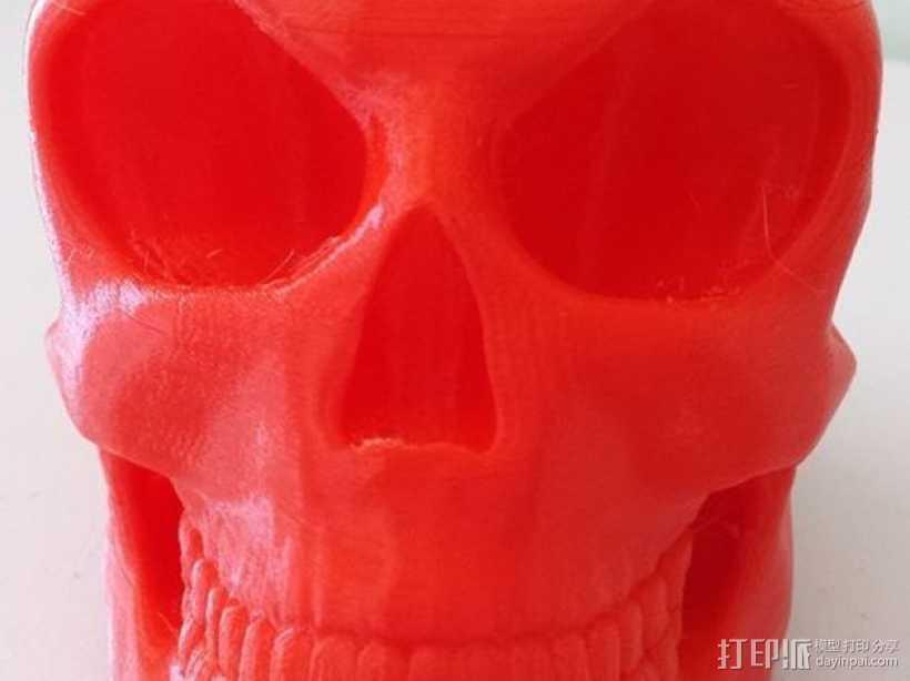 头骨 模型 3D打印模型渲染图