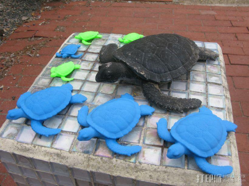 花园龟 3D打印模型渲染图