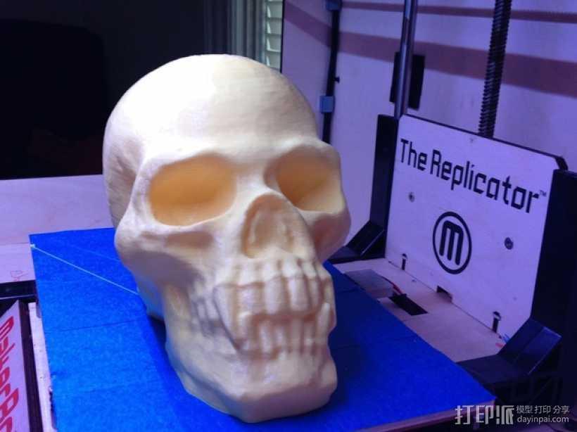 带着尖牙的骷髅 3D打印模型渲染图