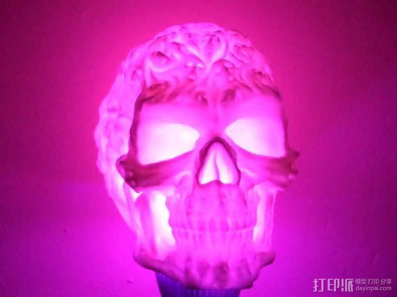 中空的骷髅 3D打印模型渲染图
