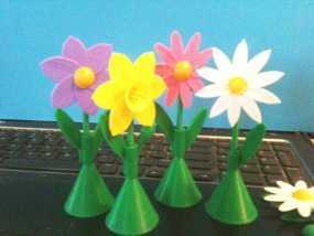 太阳花 彩色花