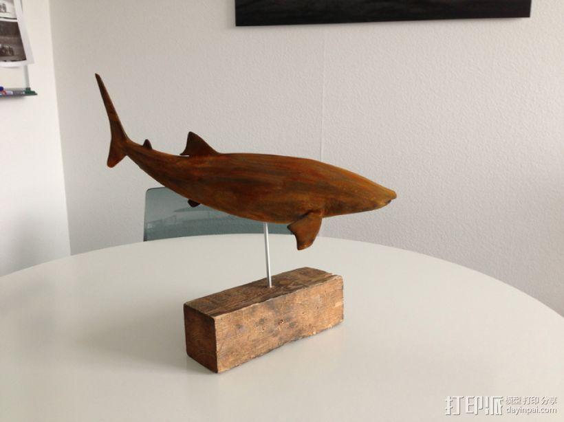 鲸鲨模型 3D打印模型渲染图