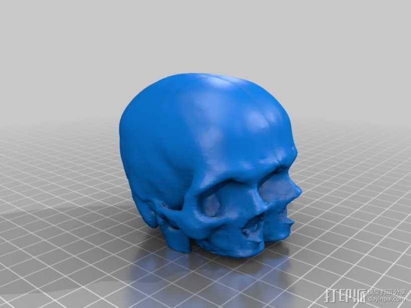 三头连体婴头骨模型 3D打印模型渲染图