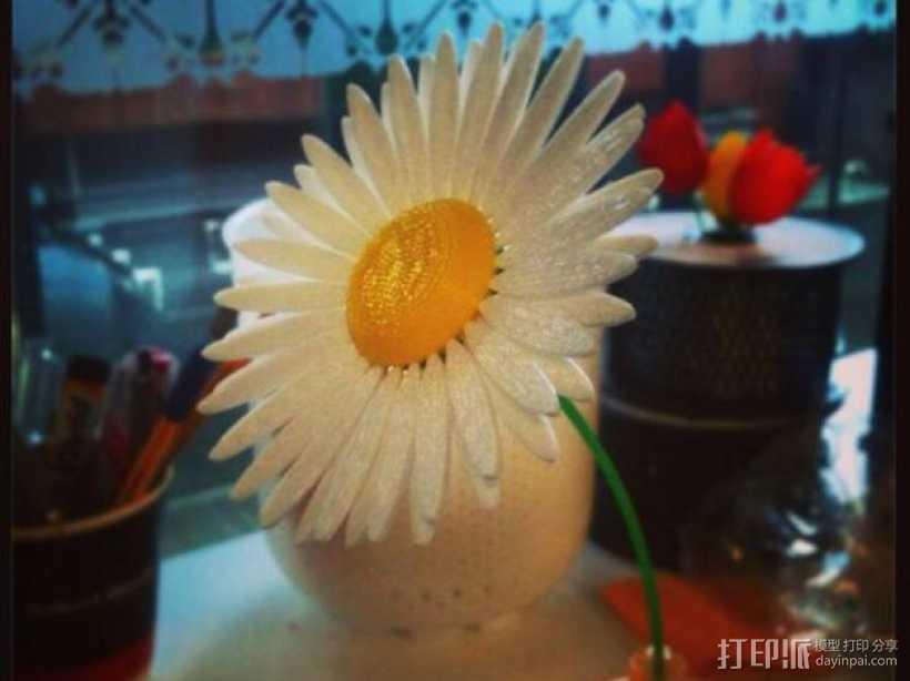 雏菊 3D打印模型渲染图
