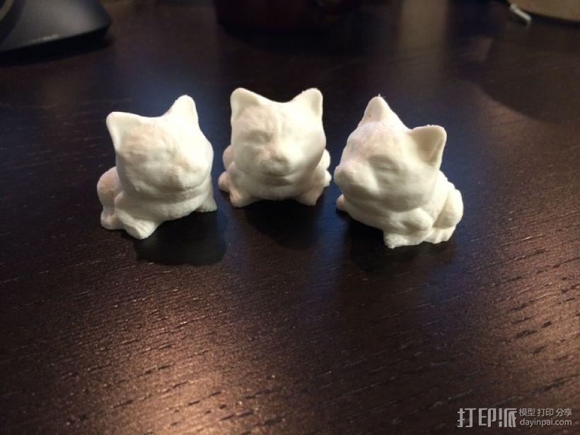 蟾蜍 猫 3D打印模型渲染图