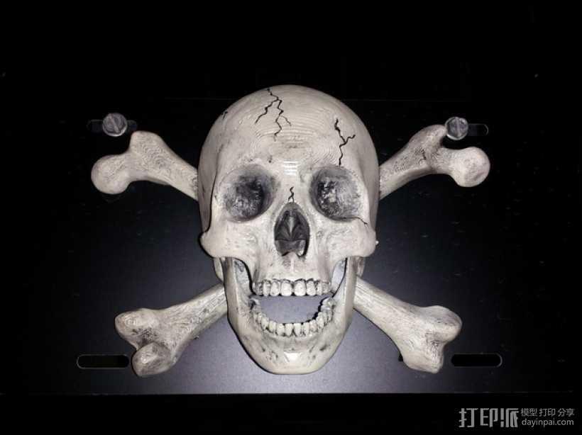 海盗旗 墙面装饰 3D打印模型渲染图