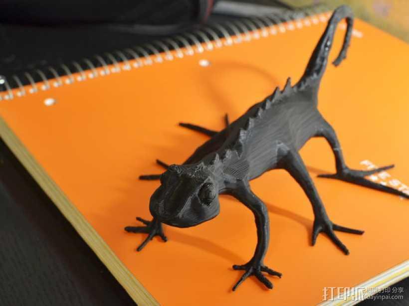 蜥蜴 3D打印模型渲染图