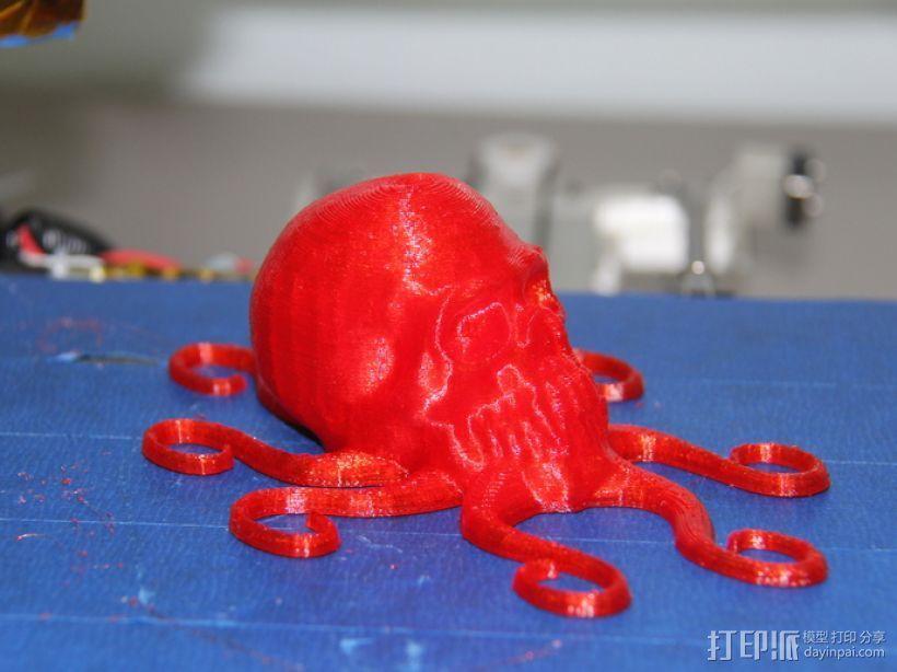 骷髅头 章鱼触角 3D打印模型渲染图