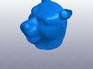 十二生肖 虎头 模型