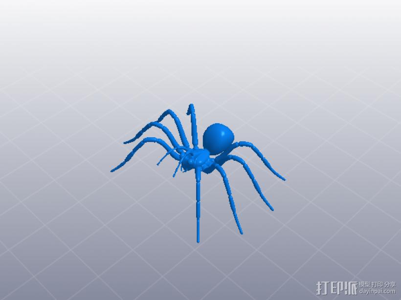 节肢动物 蜘蛛 3D打印模型渲染图