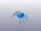节肢动物 蜘蛛
